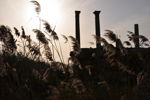 Roman ruins in Tyr